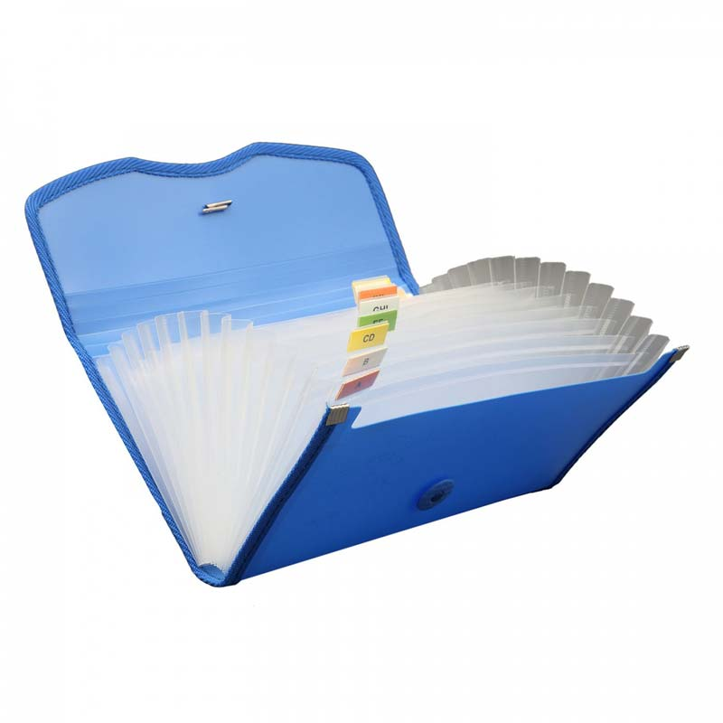 Expanding Cheque Case (Elastic) - 12 section